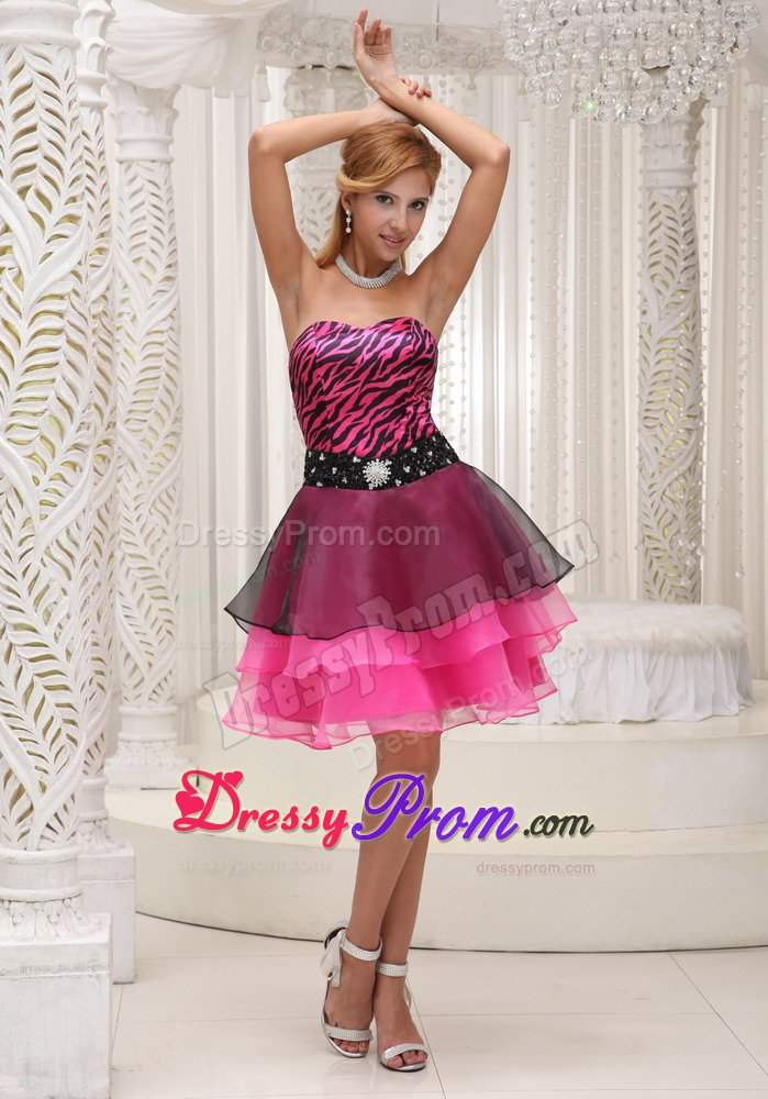 and Hot Pink Organza Prom Party Dresses with Zebra Print