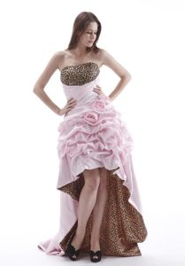 Popular Pink High-low Prom Theme Dresses with Flowers and Leopard Print
