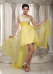 the Brand New One Shoulder Beading Prom Evening Dress Watteau Train