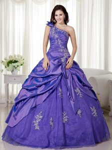 Special Purple One Shoulder Quinceanera Gown Dresses Ruched Bodice
