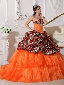 Sweetheart Leopard and Organza Appliques Dresses 15 with Sweep Train