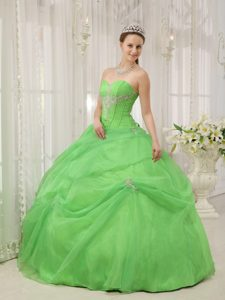 Sweetheart Spring Green Quinceanera Dresses Gowns with Appliques