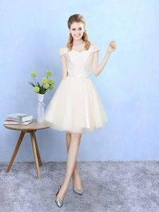 Ideal Tulle Cap Sleeves Knee Length Dama Dress and Lace