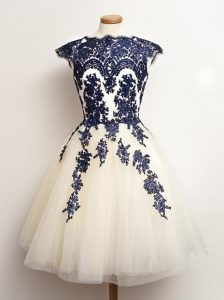 Cheap Appliques Court Dresses for Sweet 16 Blue And White Lace Up Sleeveless Mini Length