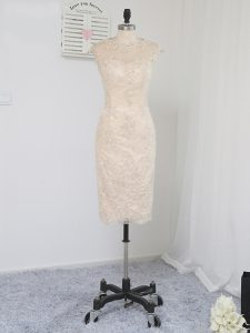 Sleeveless Lace Knee Length Zipper Homecoming Dress in Champagne with Lace and Appliques