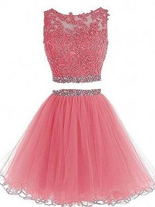 Best Scoop Sleeveless Zipper Prom Dresses Pink Tulle