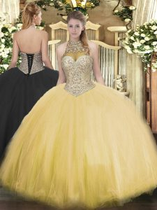 Sexy Floor Length Ball Gowns Sleeveless Gold Vestidos de Quinceanera Lace Up