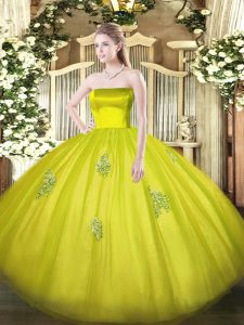 Customized Appliques Quinceanera Dresses Olive Green Zipper Sleeveless Floor Length