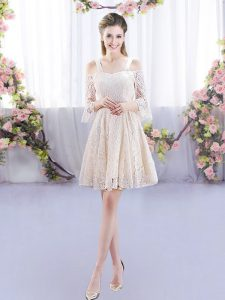 Custom Fit Champagne Lace Up Quinceanera Court Dresses Sleeveless Mini Length Lace