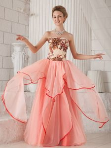 Watermelon Column and Strapless Organza Appliques Prom Dress