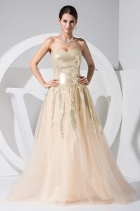 A-line Sweetheart Sequin Tulle Champagne Prom formal Dress
