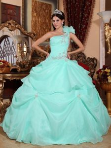 One Shoulder Organza Appliques Quinceanera Dress in Apple Green