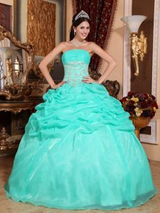 Appliques Turquoise Ball Gown Strapless Quinceanera Dress with Pick-ups