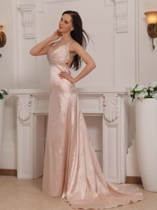 2013 Fast Delivery Pink Straps Brush Train Prom formal Dresses