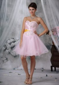 New Style Beaded and Ruched Organza Prom Maxi Dress in Baby Pink