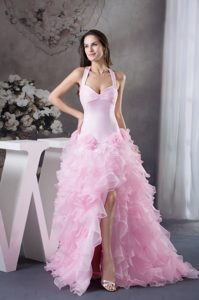 Extravagant Flowers Halter Light Pink Prom Dress Court Train