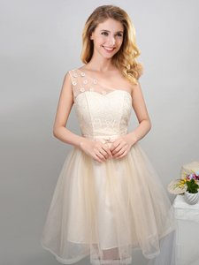 One Shoulder Sleeveless Lace Up Court Dresses for Sweet 16 Champagne Tulle