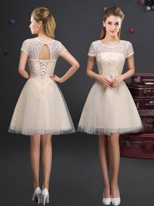 Scoop Sleeveless Quinceanera Court of Honor Dress Mini Length Appliques Champagne Tulle