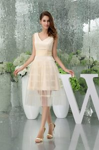 Champagne A-line V-neck Organza Prom Gown of Tea Length for Cheap