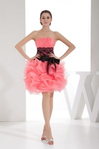 Cute Watermelon Organza Prom Dresses with Sash and Pick ups 2013