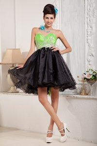 Spring Green and Black Organza Prom Dress with Appliques for Cheap