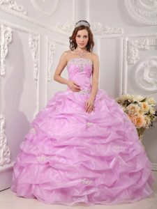 Lilac Strapless Appliques Sweet 16 Dresses with Pick-ups