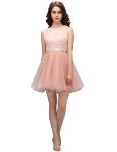 Scoop Sleeveless Zipper Evening Dress Pink Organza