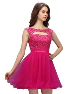 Simple A-line Homecoming Dress Fuchsia Bateau Organza Sleeveless Mini Length Zipper