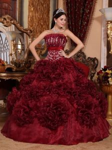 Rolling Flowers Burgundy Organza Appliques Quinceanera Dress