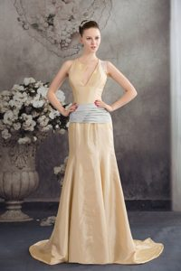 2014 New Champagne Brush Train Prom Dress with Asymmetrical Neck