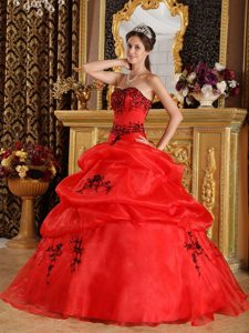 Free Shipping Red Quinceanera Dresses with Black Embroidery