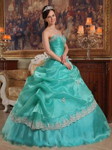 Customized Sweetheart Appliqued Pick Ups Quinceanera Dresses