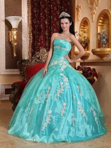 2014 Fast Shipping Turquoise Appliqued Quinceanera Party Dress