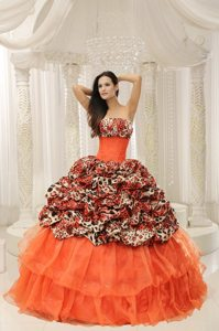 Special Leopard Print Multi-color Sweet 15 Quinceanera Dress