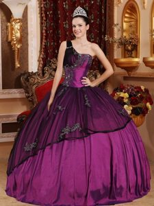 Purple and Black One Shoulder Quinceanera Dress with Appliques