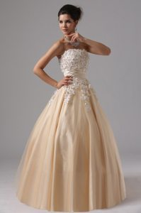 Champagne Strapless Appliques Ball Gown Prom Dress in Welland