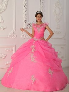 Pink Ball Gown Organza v Neck Quinceanera Dresses with Appliques