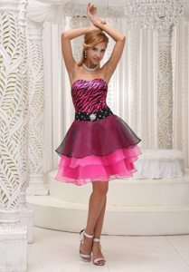 Black and Hot Pink Organza Prom Party Dresses with Zebra Print