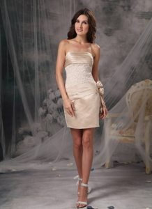Ruched Champagne Mini Prom Dama Dresses for Quinceanera Dresses