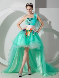 Mint Green One Shoulder High-low Appliqued Prom Homecoming Dress