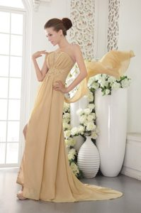 Gold Empire Chiffon Prom Graduation Dress with Brush Train 2014