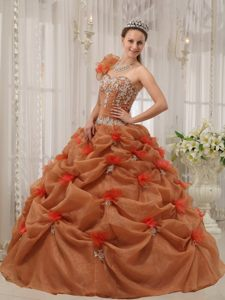 Brown One Shoulder Ball Gown Quinceanera Gown Dresses Appliques