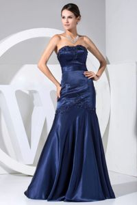 Strapless Prom Celebrity Dresses Appliques Floor-length with Zipper Back