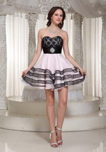 Lace Decorated Sweetheart Prom Nightclub Dresses Organza for Taubate