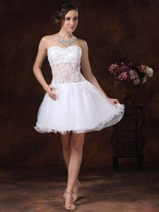Angel Organza Strapless Prom Evening Dresses Lace Decorated Mini-length
