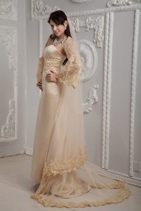 Champagne Column Prom Homecoming Dress with Appliques Brush Train