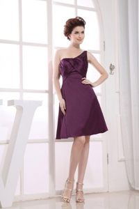 Brand New Single Shoulder Purple Sweet Sixteen Dresses Ruches