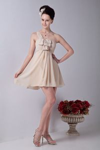 Champagne Mini-length Ruched One Shoulder Chiffon Dama Dresses