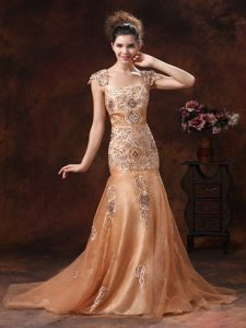 Square Neck Embroidery Brown Prom Dress in Leicestershire