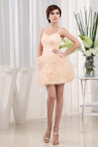 Ruche and Hand Made Flowers Baby Pink Prom Dress with Spaghetti Straps